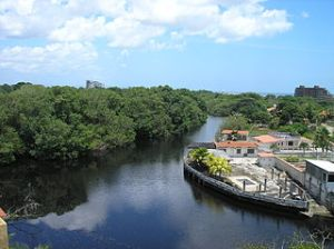 Picture of Rio Chico, where my cousins and I would spend a few weeks during the summer. Courtesy of William Applewhite.